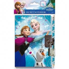 Disney Frozen geheim dagboek
